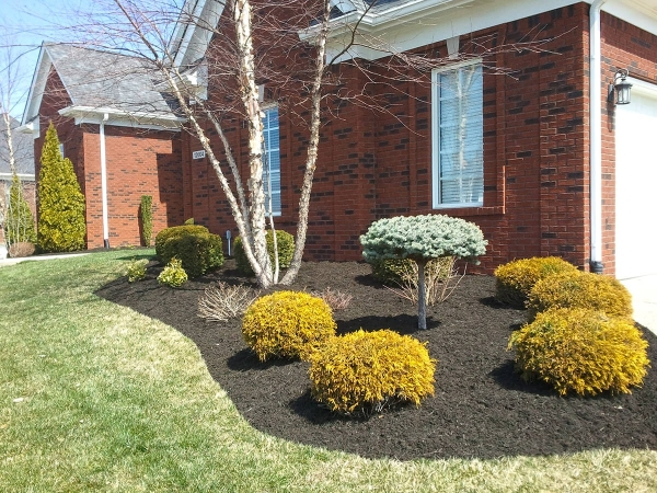 Landscaping3